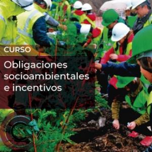 Obligaciones socioambientales e incentivos
