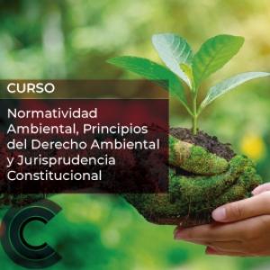 Normatividad Ambiental, Principios del Derecho Ambiental y Jurisprudencia Constitucional