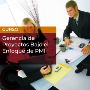 Gerencia de Proyectos Bajo el Enfoque de PMI