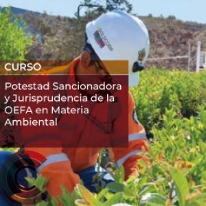 Potestad Sancionadora y Jurisprudencia de la OEFA en Materia Ambiental